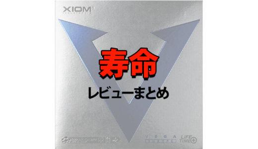 卓球ラバー ヴェガヨーロッパ寿命【どれくらいもつ?】